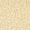 Seedbead 10/0 Bone Loose - Solgel